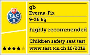 Valutazione TCS di Gb Everna Fix